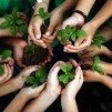 Ce inseamna ecologia, reciclarea si poluarea